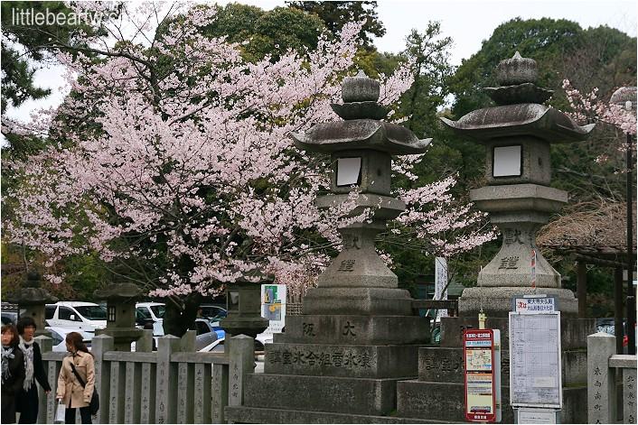 奈良公園-14