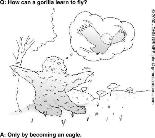 谜底1-只有让大猩猩变成鹰