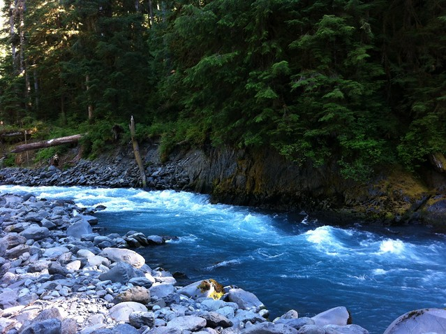 Blue Water Of The Hoh River