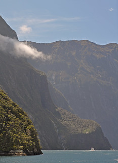 New Zealand - Milford Sound - cruise