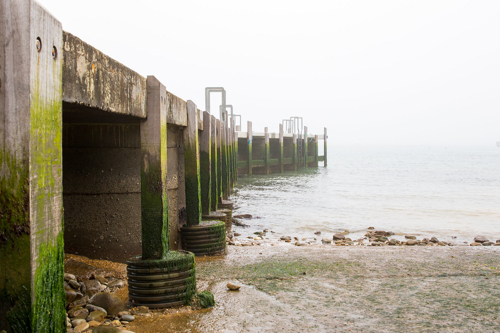 jetty and fog - Click to show full size