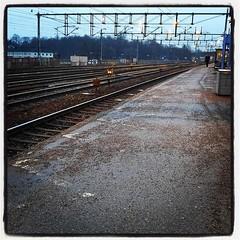 Inte helt ljust ännu, men snart så! Missade det rätta tåget med typ 30 sek, så jag tog ett annat för att åtminstone komma en bit på väg och byter sålunda vid Karlberg. Det är roligare att vänta utomhus.