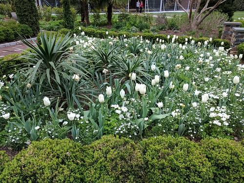 Duke Gardens spring 2017