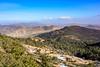 Parc National de Theniet El-Had