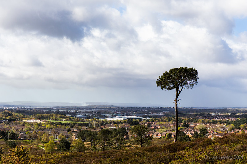 View across Poole to the Purbecks