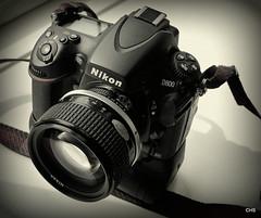 D800 / 85mm 1.4