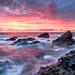 Wild Coast by andywon