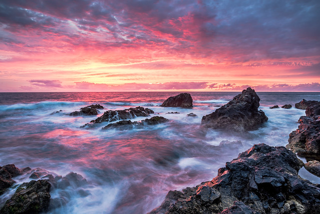 andywon - Wild Coast