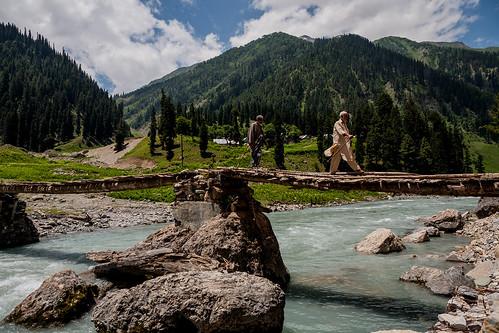 India - Sarbal, Kashmir