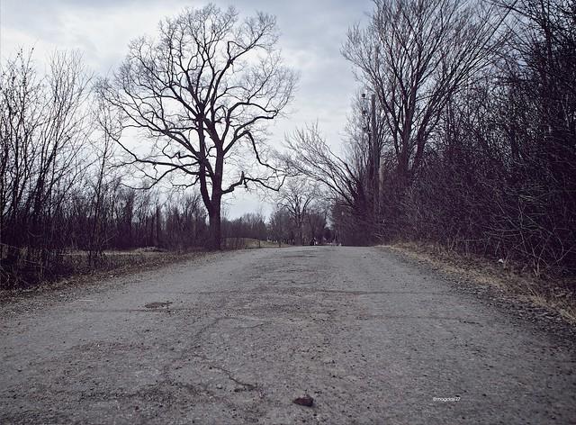 anteketborka.blogspot.com,   printemps 2
