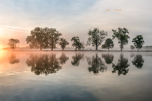 trees lake reflection sunrise dawn iowa councilbluffs boyscoutisland lakemanawastatepark