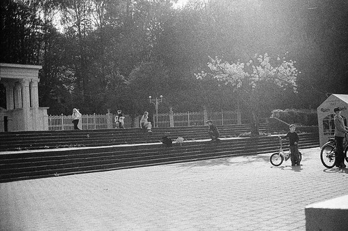 lviv live view