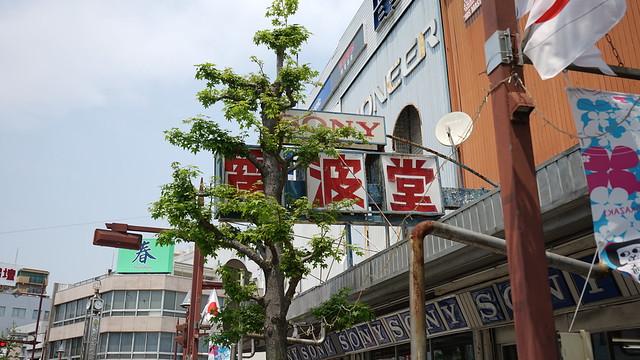 Okazaki-Kouseichou_05