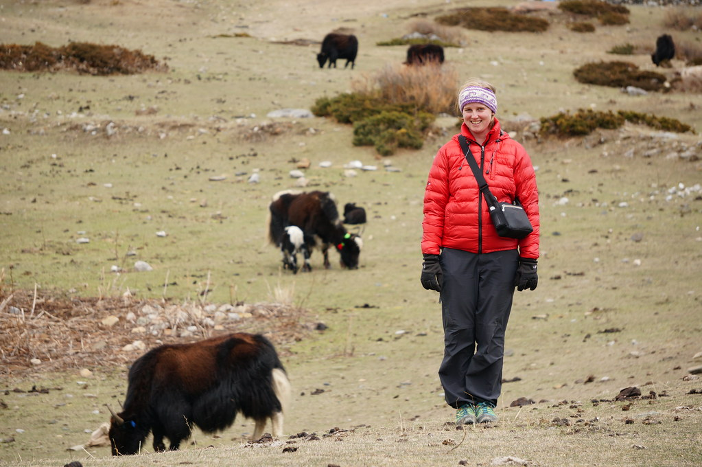 Annemarie with Yaks near Yak Khaka