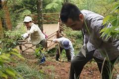 志工們為打造觀霧山椒魚的家,不惜揮汗斬草除根。(圖片來源:雪霸國家公園)