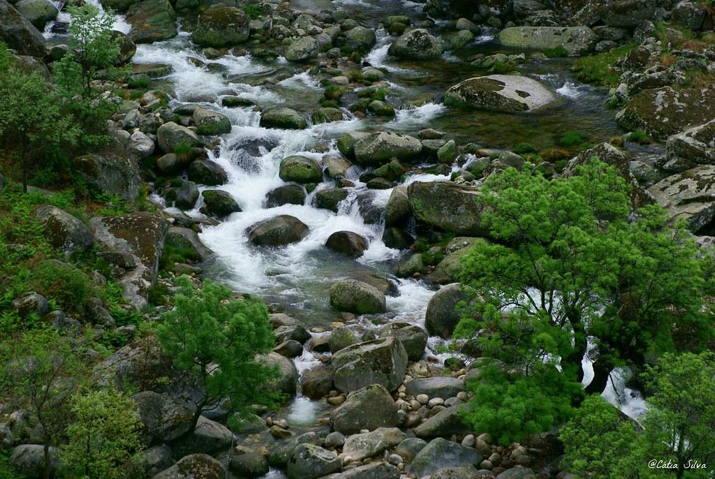 Reserva Natural de la Garganta de los Infiernos_Valle del  Jerte (18)