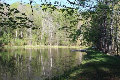 Cabin May 2014-5