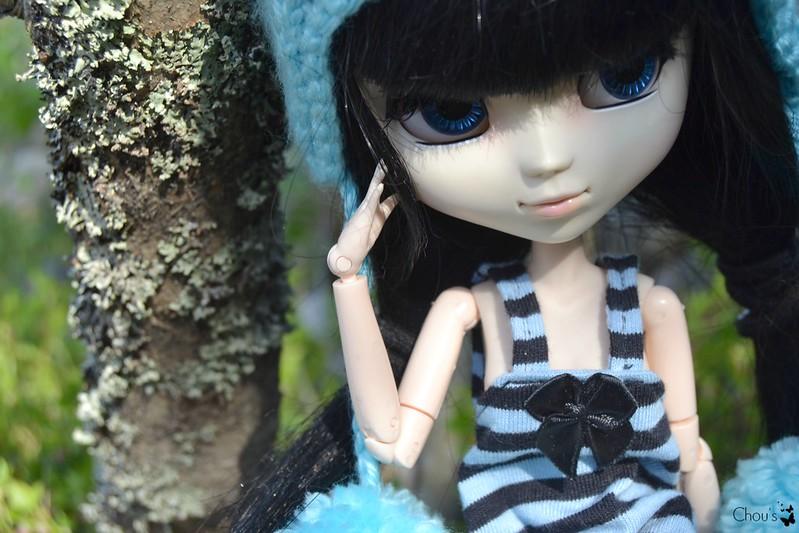 Spring wind - Cassia, Akemi Homura