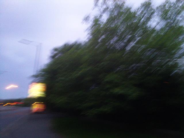 PIC_1613