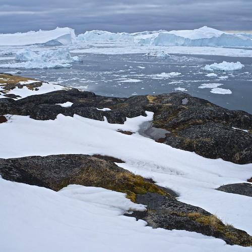 snow ice rock square landscape shoreline greenland fjord iceberg fiord manuallensnocpu ilulisat