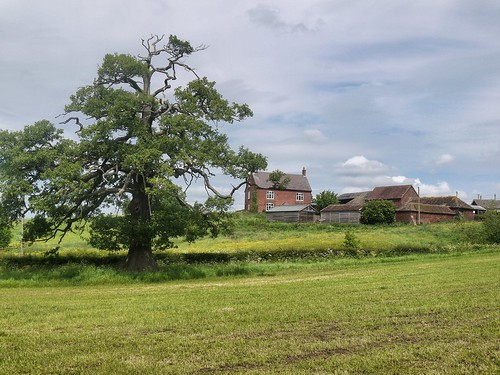 Arley Stables