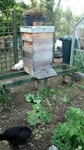 hive May 14