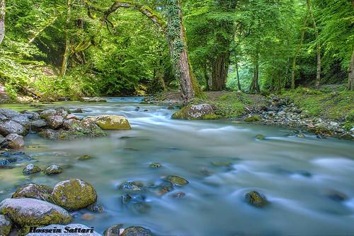 longexposure forest river spring iran mazandaran sari 2014 1393 shirinrood