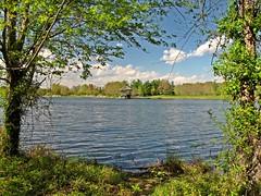 Lake Artemesia and vicinity, April 26, 2014