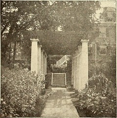 """Image from page 511 of """"American homes and gardens"""" (1905)"""