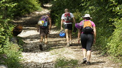 trail, adventure, walking, sports, recreation, outdoor recreation,