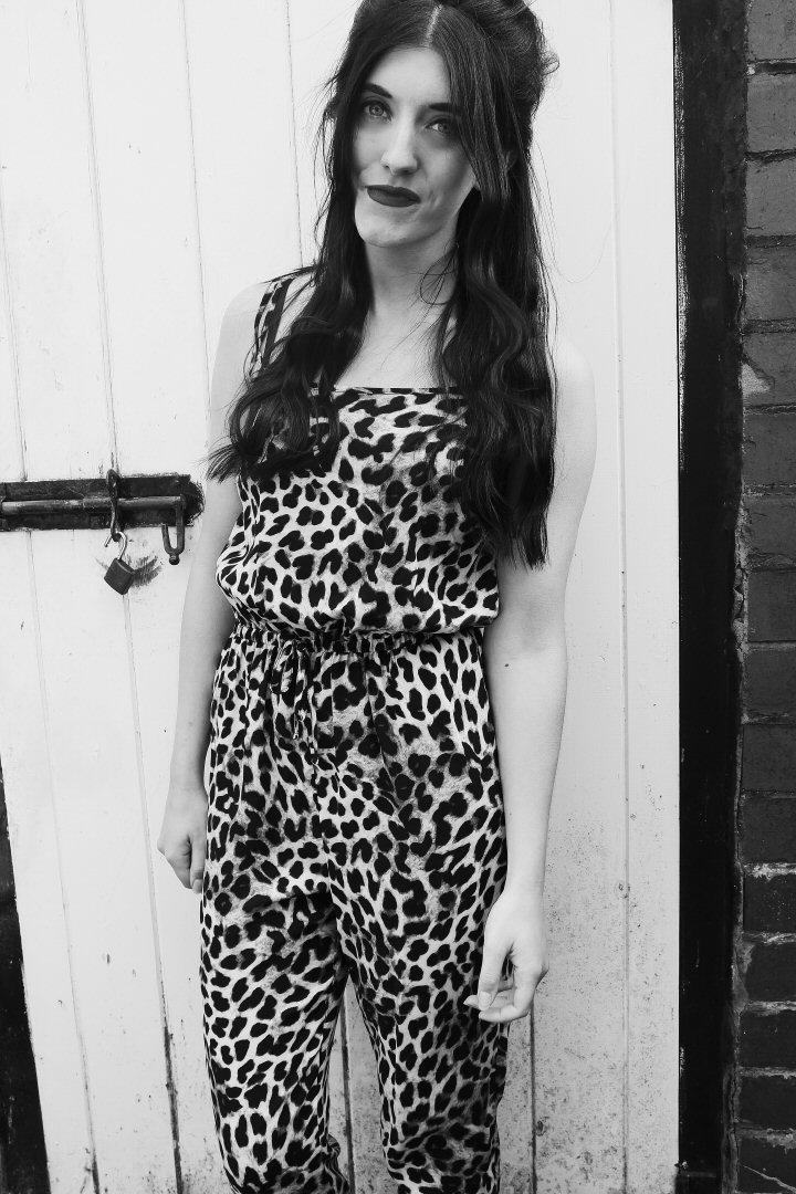 leopardblog3