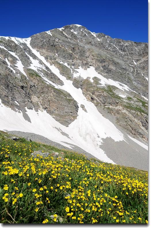 Torreys Peak from Grays' slope 6
