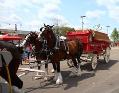 2014 Ohio State Fair
