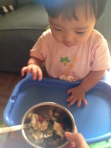 今天的副食品是馬麻煮的打拋雞