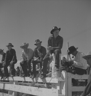 Group of cowboys sitting on a fence watching the competitions at the Calgary Stampede, Alberta / Groupe de cow-boys assis sur une clôture pour regarder les compétitions, Stampede de Calgary (Alberta)