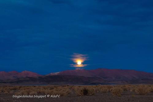 Sobre luas... . . Esta foi uma das luas mais lindas que já vi...Talvez porque eu estava em um lugar tão especial, em meio a um deserto, sozinha mas me sentindo completa.  Ela era linda, grandiosa, imponente. Uma força e beleza que nenhuma foto poderia rep