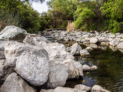 stream, boulder, water, tree, river, nature, geology, bedrock, wilderness, stream bed, rock,