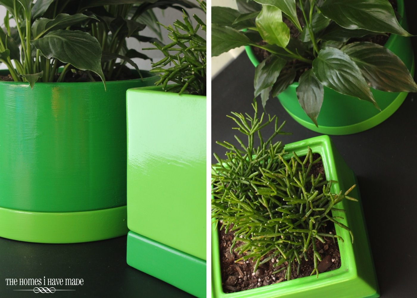 Green Planters-005