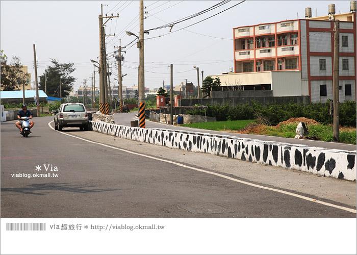 【彰化景點推薦】乳牛彩繪村(福寶村)~數百頭彩色小牛+夢幻藍晒圖的彩色村6