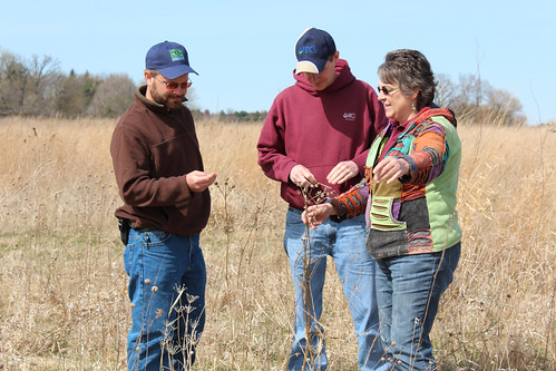 Kevin Rohling talks about the plants in the wetland with Josh Franks, NRCS district conservationist, and Ellen Starr, NRCS area biologist. NRCS photo.