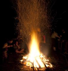 CROP Bonfire