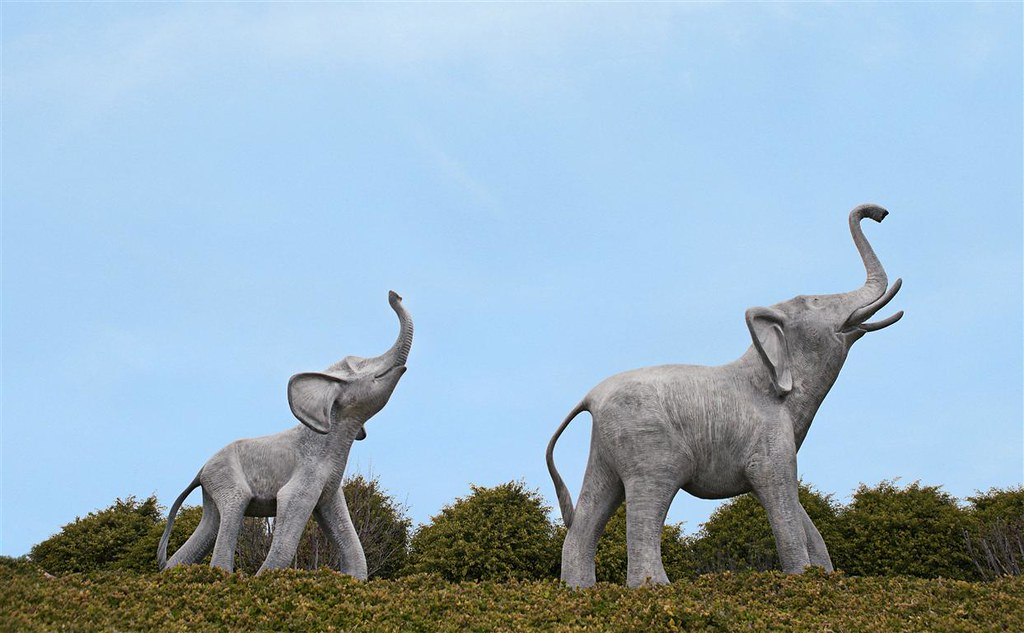 Large Elephant & Medium Elephant