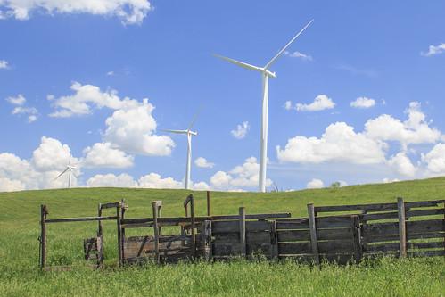 windmill rural farm windfarm windpower electricgeneration