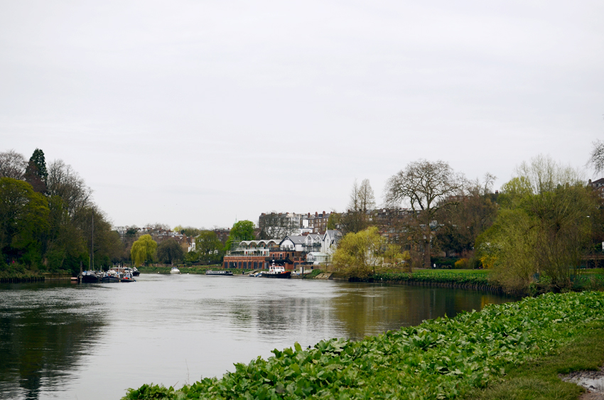 richmond thames view