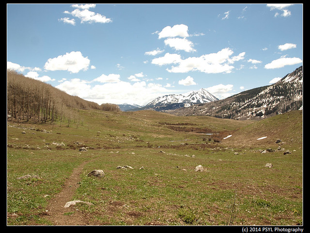 2014-05-26-P5264691