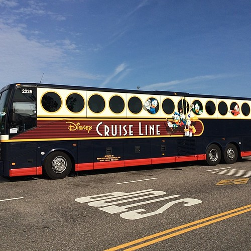 本日のバス。