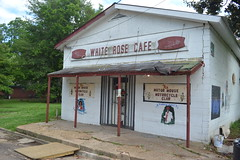 071 White Rose Cafe