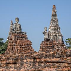 Wat Chaiwatthanaram Ubosot Buddha Images (DTHA0191) วัดไชยวัฒนาราม พระพุทธรูป