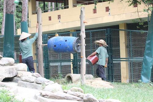 setting up enclosures 1