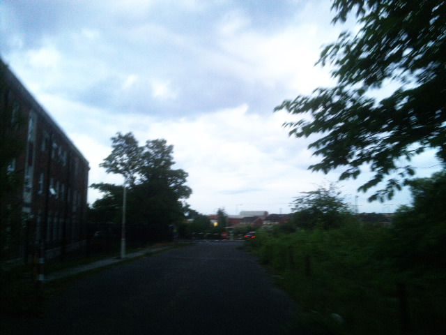 PIC_1390
